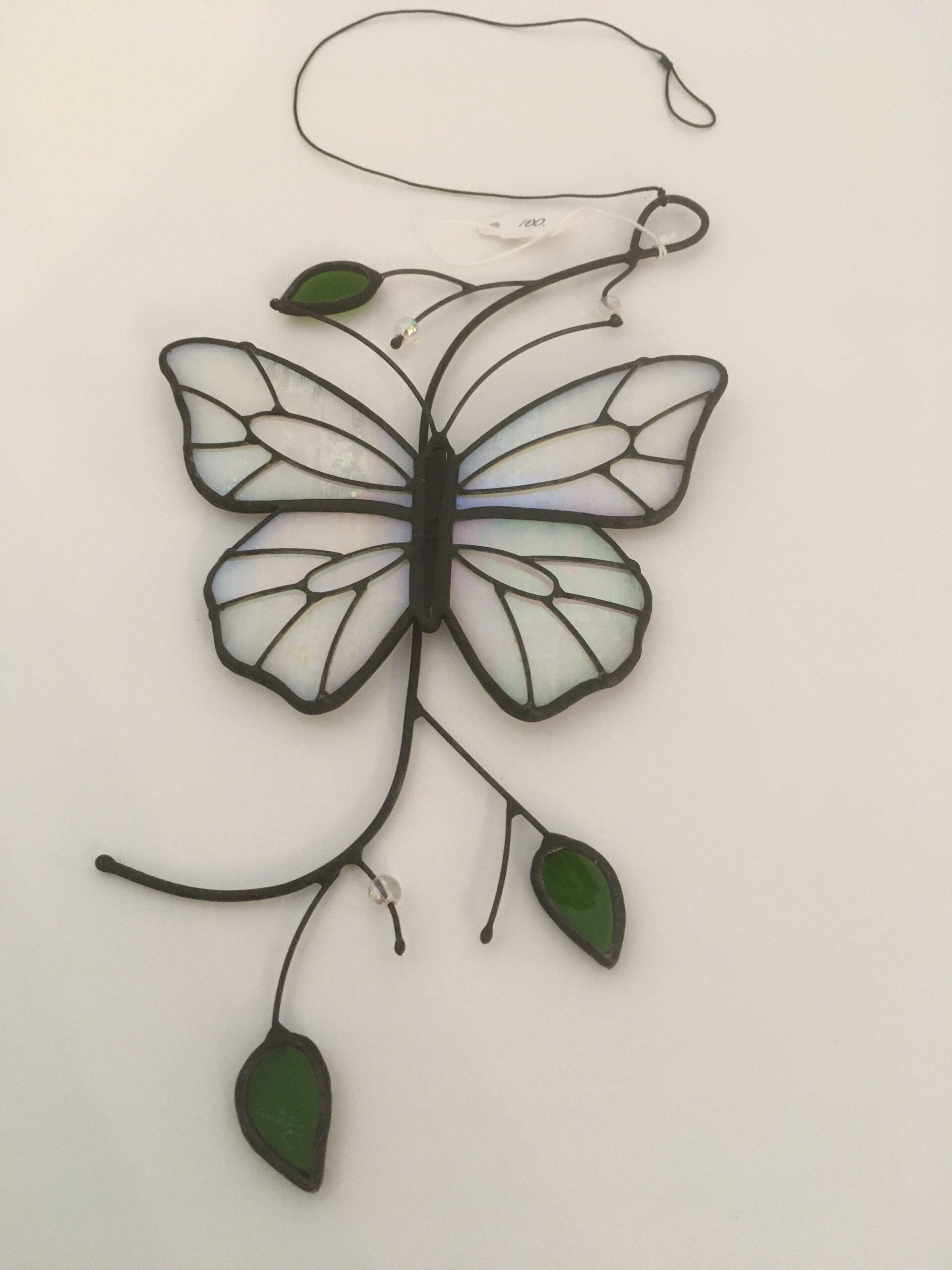 papillon blanc marquis